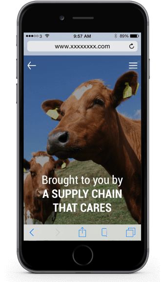 traceability and transparency